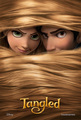 Tangled Poster - disneys-rapunzel photo