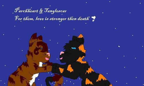 Tanglescar & Parchheart