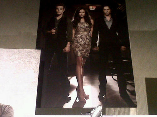 Vampire Diaries - season 2 poster (low quality)
