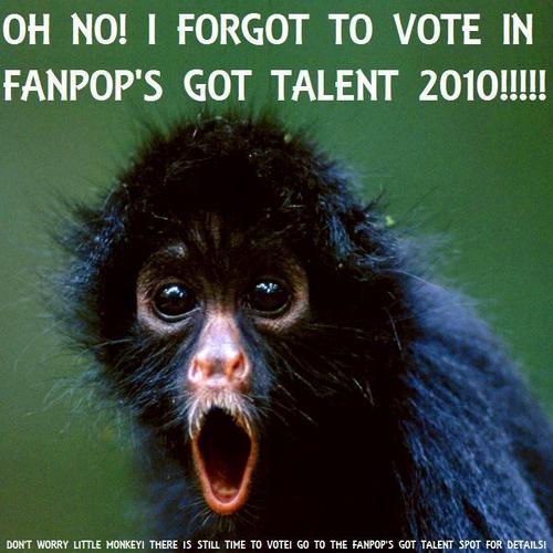 Vote Monkey!