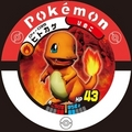 Charmander - charizard photo
