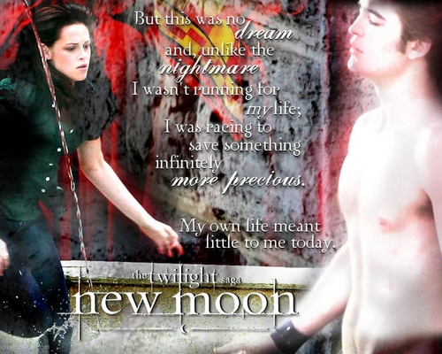 Edward & Bella NM