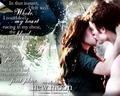 Edward & Bella reunion NM