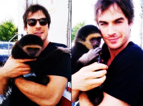 Ian-Damon