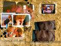 television - LOST wallpaper