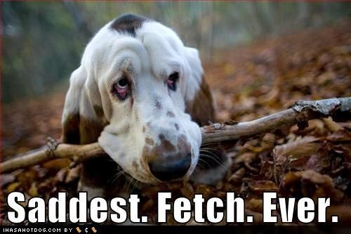 Saddest Fetch Ever :(