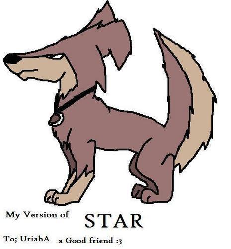 별, 스타