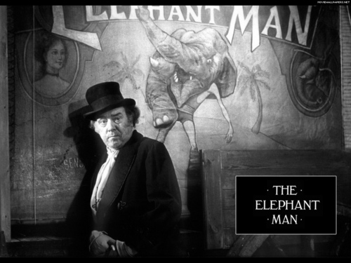 The éléphant Man fond d'écran entitled The éléphant Man