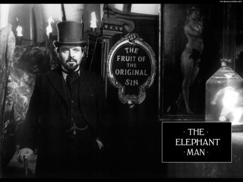 The Elephant Man wallpaper called The Elephant Man