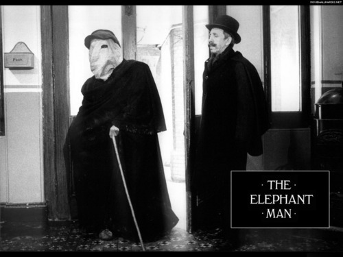 The Elephant Man wallpaper entitled The Elephant Man