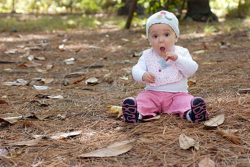 baby Nessie in the woods