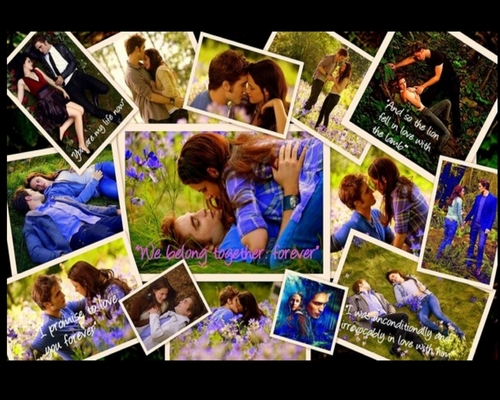 ~Edward & Bella meadow~