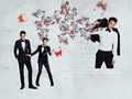 Brandon & The Boys - brandon-flowers wallpaper