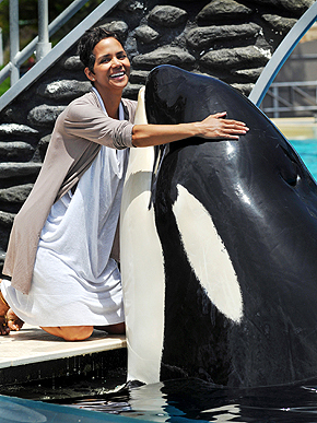 Celebs at Sea World  - animals Photo
