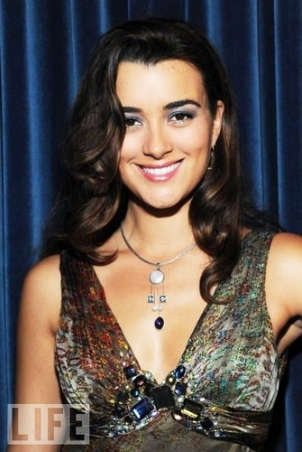 Cote de Pablo wallpaper entitled Cote