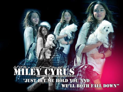 miley cyrus wallpaper entitled Miley Cyrus