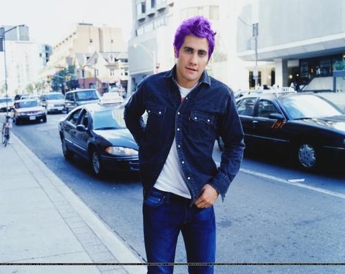 Teddy if he had purple hair