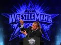 WrestleMania 25th Anniversary Press Conference
