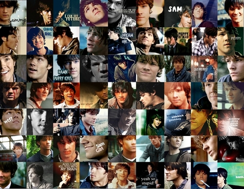 Sam Winchester hình nền called collage