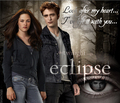 ~Eclipse~ - twilight-series photo