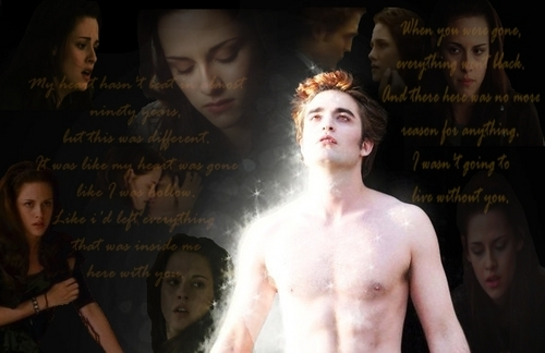 ~Edward & Bella~