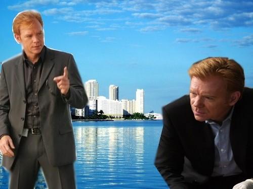 *Miami skyline*