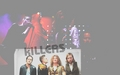 *The Killers* - the-killers wallpaper