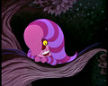 Cheshire Cat hiding behind a tail