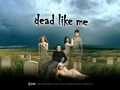 Dead Like Me - dead-like-me wallpaper