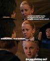 Draco/Harry
