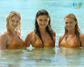 Wallpaper - h2o-just-add-water-cleo-bella-and-rikki wallpaper