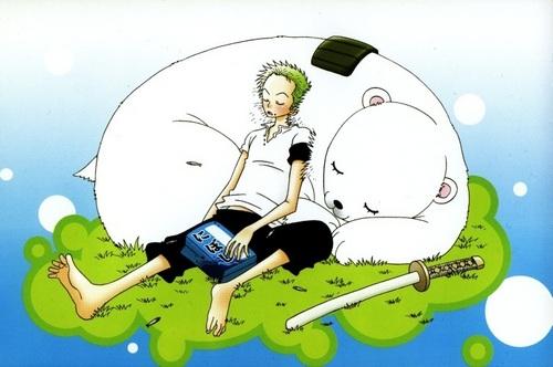 Zoro sleeping with a bear