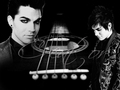 adam - adam-lambert wallpaper