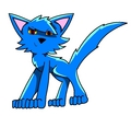 blue cat picture 1