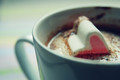 hot cocoa - hot-chocolate photo