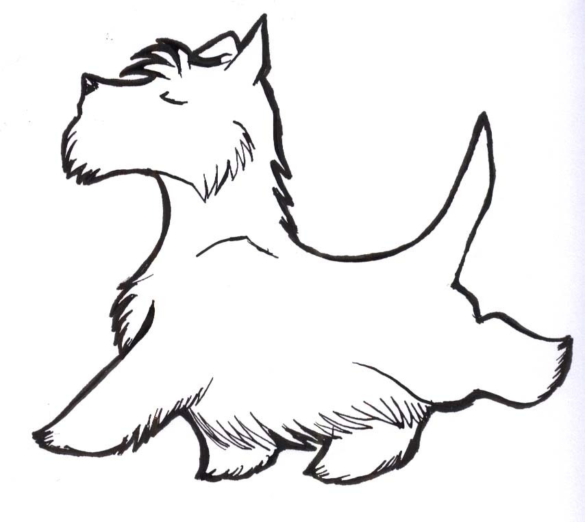 scottish terrier coloring pages - photo#2
