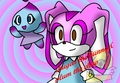 shugar&plum - girl-sonic-fan-characters photo