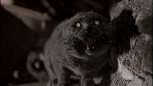 Pet Sematary images Church wallpaper and background photos