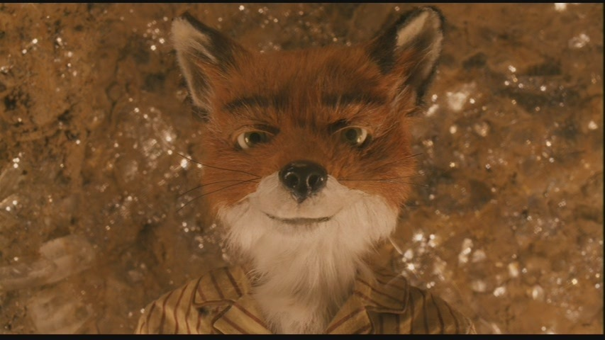 essay about fantastic mr fox Fantastic mr fox stories and  math homework reddit online help homework dissertation spss help essay editing service uk fantastic mr fox creative.