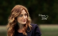 Maura Isles - rizzoli-and-isles wallpaper