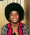 Michael Jackson                            (niks95) - michael-jackson photo