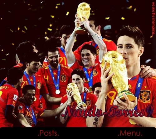 Spain National Football Team wallpaper entitled TorresCup