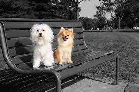 Two Little Cuties <3