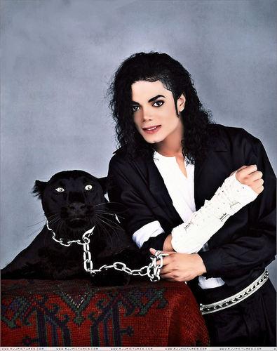 Various MJ