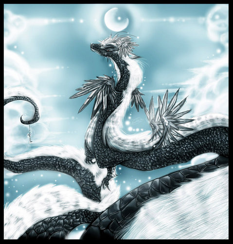Yin and Yang Dragon