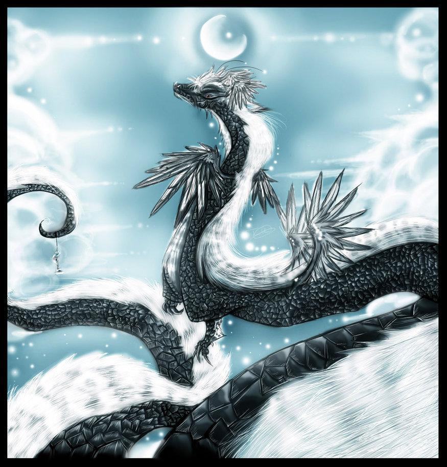 Yin and Yang Dragon