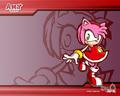 amy battle wallpaper - amy-rose wallpaper