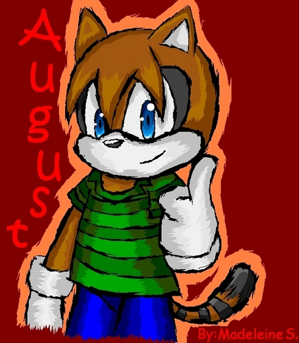 august the racoon