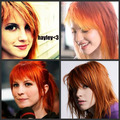 hayley collage
