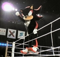 shadow in smack down!!!!!! - shadow-the-hedgehog photo